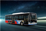 中植CDL6100UWBEV公交车(纯电动10-18座)