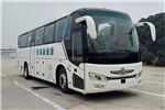 东风旅行车DFA6118LBEV客车(纯电动24-50座)