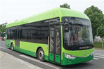 安凯HFF6120G03FCEV公交车(燃料电池20-39座)