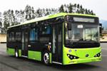 比亚迪BYD6101LGEV8公交车(纯电动20-39座)