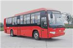 海格KLQ6119ZGC5公交车(天然气国五20-48座)