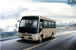 金龙XMQ6706DYD5D客车(柴油国五10-23座)