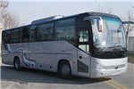 宇通ZK6119BEVQY18P客车(纯电动24-50座)