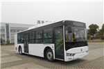 亚星JS6101GHBEV28公交车(纯电动16-33座)
