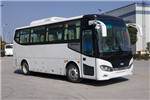 南京金龙NJL6822EV1客车(纯电动24-36座)