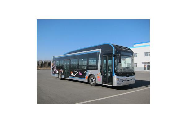 黄海DD6129EV19公交车(纯电动24-38座)