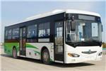 东风旅行车DFA6100CBEV公交车(纯电动24-41座)