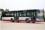 安凯HFF6121G15C公交车(天然气国五24-46座)