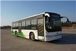 安凯HFF6120GCE5B公交车(天然气国五24-46座)