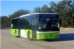 福田欧辉BJ6123EVCA-38公交车(纯电动20-37座)