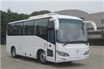 申沃SWB6802BEV24客车(纯电动24-32座)
