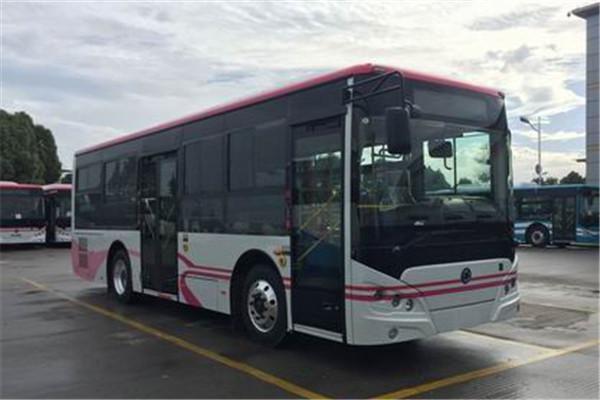 申龙SLK6859ULE0BEVS2公交车(纯电动10-29座)