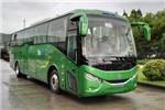 银隆GTQ6119BEVPT9客车(纯电动24-51座)