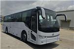 金龙XMQ6110BCBEVL11客车(纯电动24-48座)