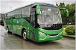银隆GTQ6119BEVP9客车(纯电动24-49座)