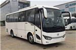 金龙XMQ6879AYD5C客车(柴油国五24-38座)