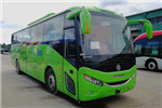 银隆GTQ6119BEVP2客车(纯电动24-49座)