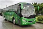 银隆GTQ6119BEVH11客车(纯电动24-49座)