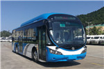 银隆GTQ6851BEVBT20公交车(纯电动12-26座)