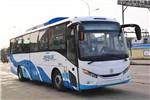 银隆GTQ6119BEVH21客车(纯电动24-46座)