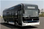 远程DNC6101BEVG12低入口公交车(纯电动20-38座)