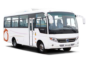 申龙SLK6720公交车