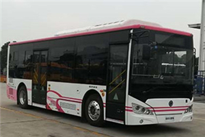 申龙SLK6949公交车