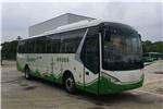 武汉WH6100BEV客车(纯电动24-61座)