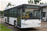 武汉WH6102GBEV公交车(纯电动19-40座)