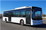 黄海DD6109EV18公交车(纯电动17-33座)