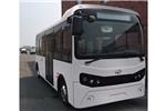 建康NJC6680GBEV公交车(纯电动10-19座)