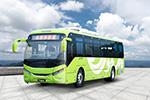 银隆GTQ6129BEVB30公交车(纯电动25-50座)
